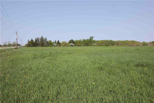 Vacant Land at 4803 Hwy 12, Ramara, Ontario. Image 5