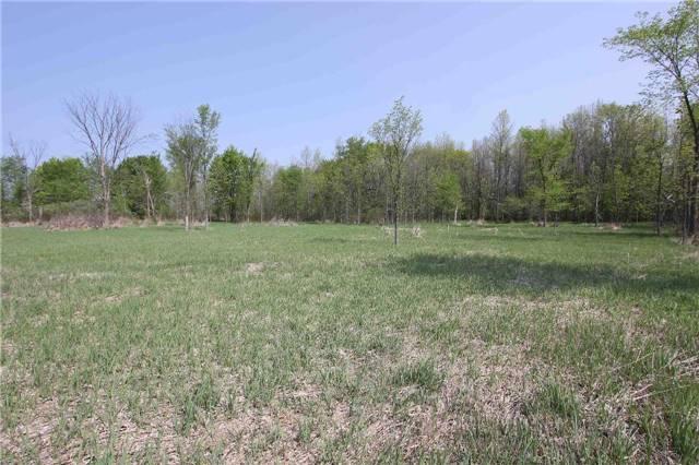 Vacant Land at 4803 Hwy 12, Ramara, Ontario. Image 6