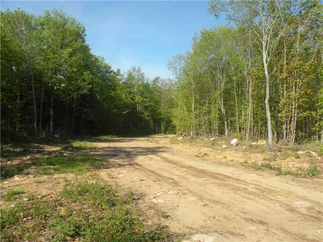 Vacant Land at Lot 4 Picard Lane, Gravenhurst, Ontario. Image 1