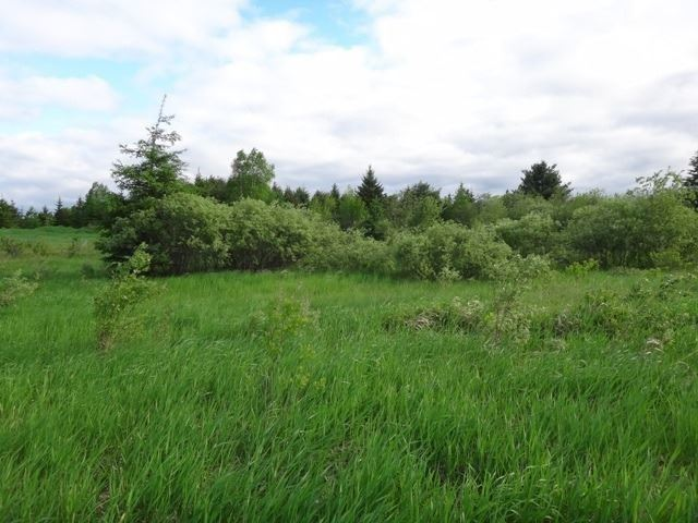 Vacant Land at 0 Ratter Lake Rd, Markstay-Warren, Ontario. Image 1
