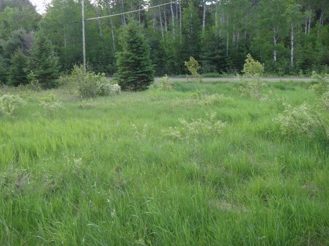 Vacant Land at 0 Ratter Lake Rd, Markstay-Warren, Ontario. Image 4