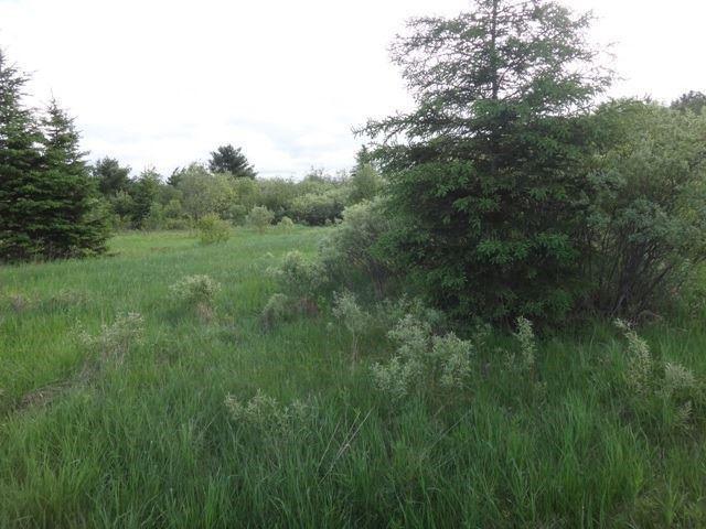 Vacant Land at 0 Ratter Lake Rd, Markstay-Warren, Ontario. Image 5