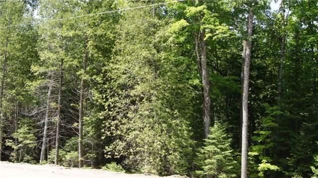 Vacant Land at 11 Lakewoods Dr, Madawaska Valley, Ontario. Image 2
