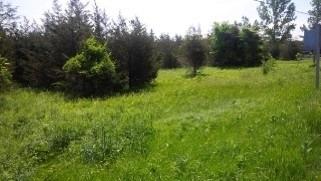 Vacant Land at 49 Folkard Lane, Prince Edward County, Ontario. Image 2