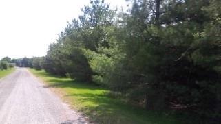 Vacant Land at 49 Folkard Lane, Prince Edward County, Ontario. Image 4