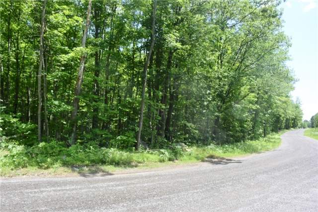 Vacant Land at 0 Blairton Rd, Havelock-Belmont-Methuen, Ontario. Image 1