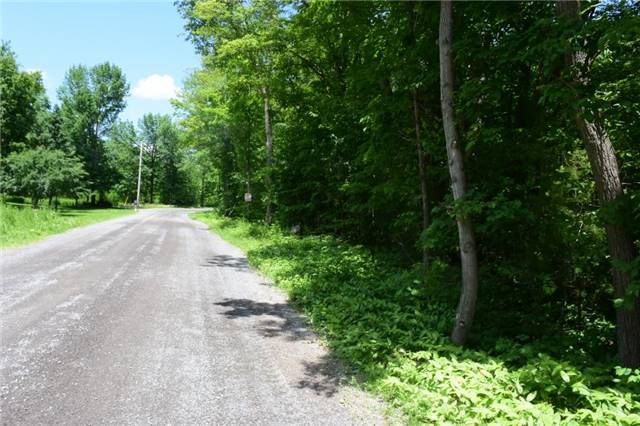 Vacant Land at 0 Blairton Rd, Havelock-Belmont-Methuen, Ontario. Image 2