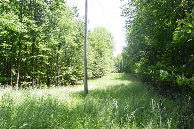 Vacant Land at 0 Blairton Rd, Havelock-Belmont-Methuen, Ontario. Image 5