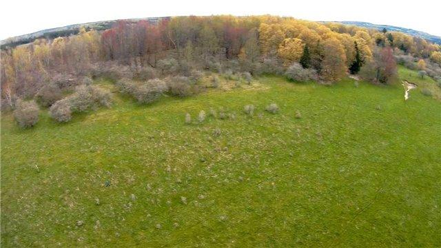 Vacant Land at Lot 31 7th Line E, Mulmur, Ontario. Image 12