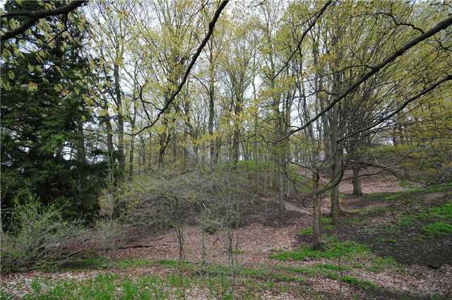Vacant Land at Lot 31 7th Line E, Mulmur, Ontario. Image 4
