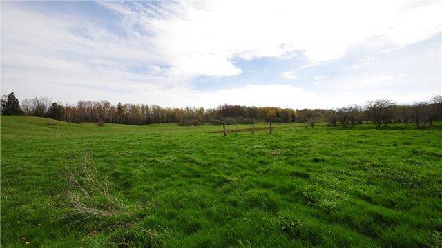 Vacant Land at Lot 31 7th Line E, Mulmur, Ontario. Image 6
