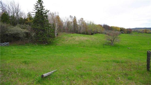Vacant Land at Lot 31 7th Line E, Mulmur, Ontario. Image 9