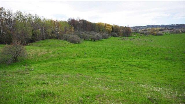 Vacant Land at Lot 31 7th Line E, Mulmur, Ontario. Image 10
