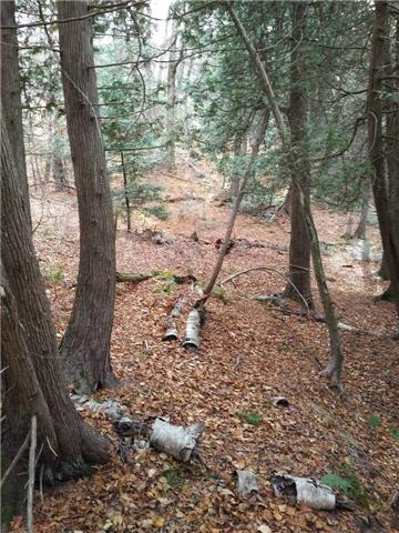Vacant Land at . Cherry Hill, Huntsville, Ontario. Image 5