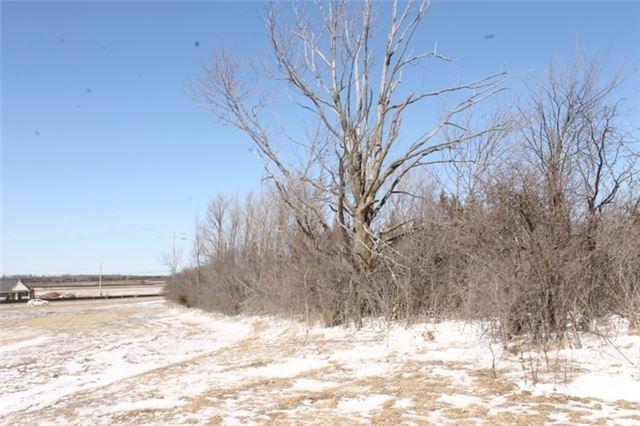 Detached at 187 Colborne West St, Kawartha Lakes, Ontario. Image 10