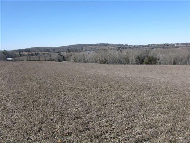 Vacant Land at 1220 Villiers  Line, Otonabee-South Monaghan, Ontario. Image 4