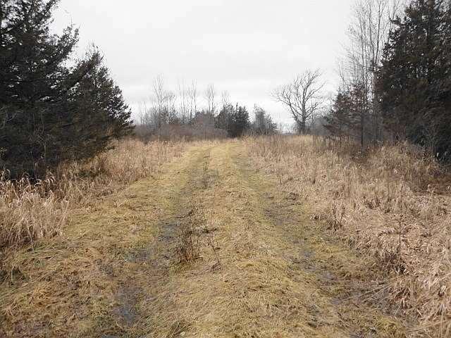 Vacant Land at Con 3 County Rd 7, Loyalist, Ontario. Image 1