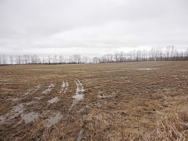 Vacant Land at Con 3 County Rd 7, Loyalist, Ontario. Image 6