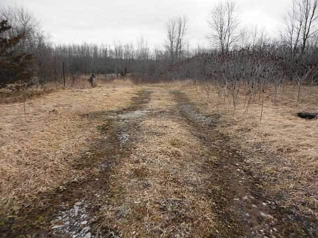 Vacant Land at Con 3 County Rd 7, Loyalist, Ontario. Image 7