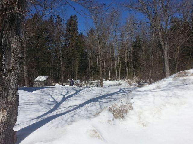 Detached at 31707 Hwy 17, Deep River, Ontario. Image 7