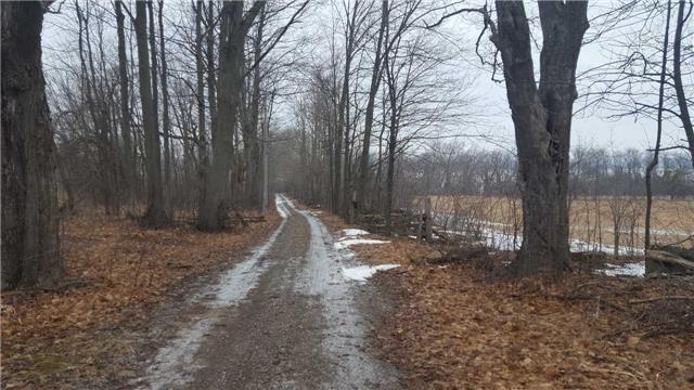 Farm at 740 Sturgeon Pt. Rd, Kawartha Lakes, Ontario. Image 14