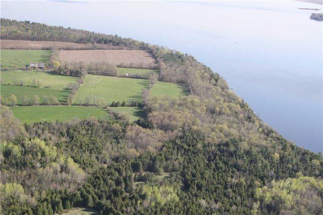 Farm at 740 Sturgeon Pt. Rd, Kawartha Lakes, Ontario. Image 19