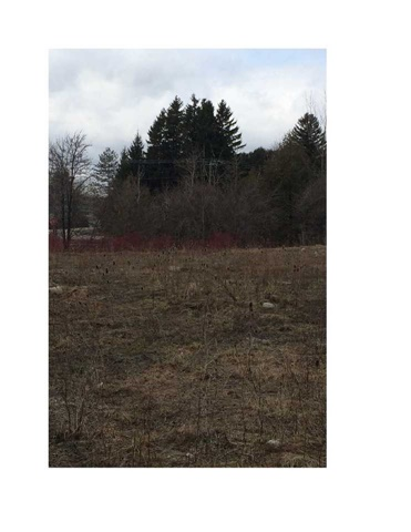 Vacant Land at Lt 2 High Bluff Lane, Blue Mountains, Ontario. Image 2