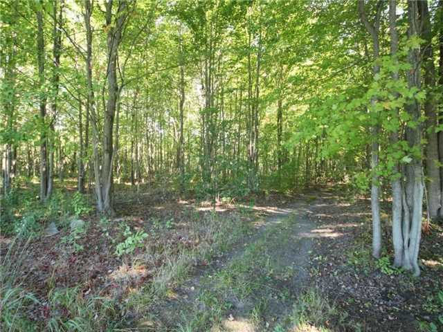 Vacant Land at 93 Limoges Rd, Nation, Ontario. Image 15