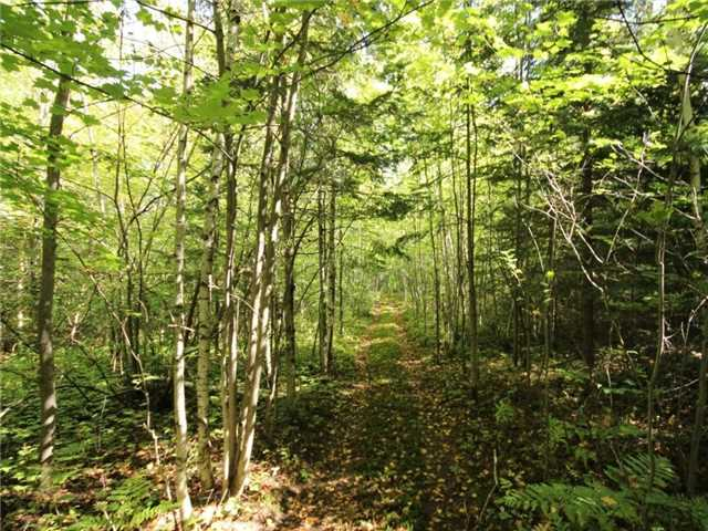 Vacant Land at 93 Limoges Rd, Nation, Ontario. Image 16