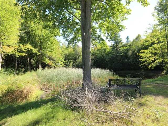 Vacant Land at 93 Limoges Rd, Nation, Ontario. Image 2