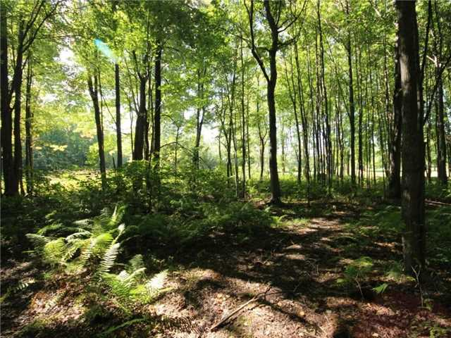 Vacant Land at 93 Limoges Rd, Nation, Ontario. Image 3
