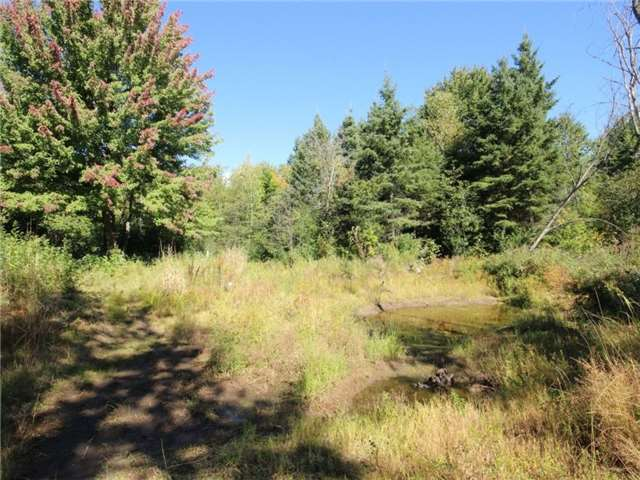 Vacant Land at 93 Limoges Rd, Nation, Ontario. Image 4