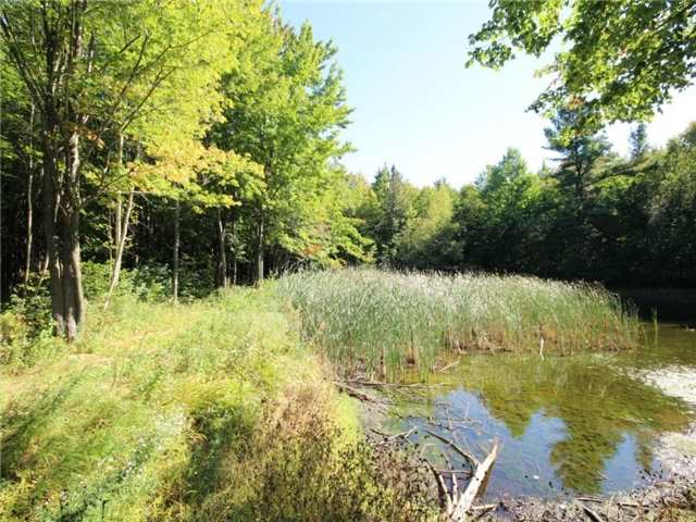 Vacant Land at 93 Limoges Rd, Nation, Ontario. Image 6