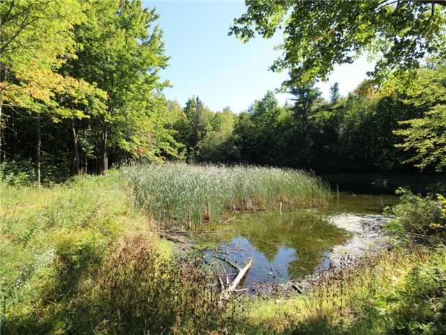Vacant Land at 93 Limoges Rd, Nation, Ontario. Image 7