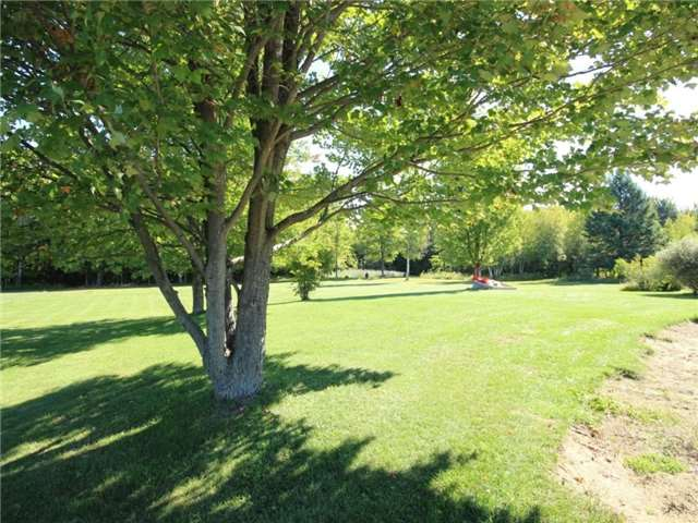 Vacant Land at 93 Limoges Rd, Nation, Ontario. Image 9