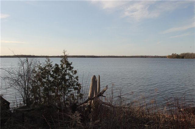 Vacant Land at Lot 29 Lakeview Dr, Trent Hills, Ontario. Image 6