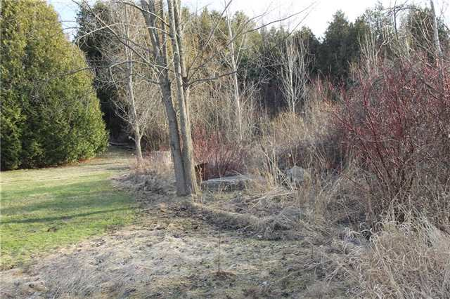 Vacant Land at Lot 29 Lakeview Dr, Trent Hills, Ontario. Image 10