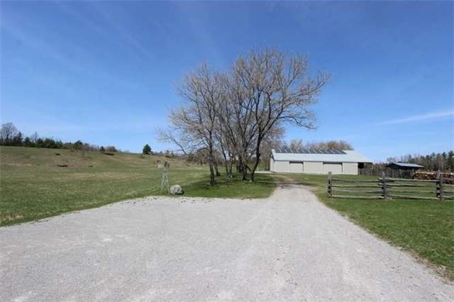 Farm at 765 County Rd 121, Kawartha Lakes, Ontario. Image 11