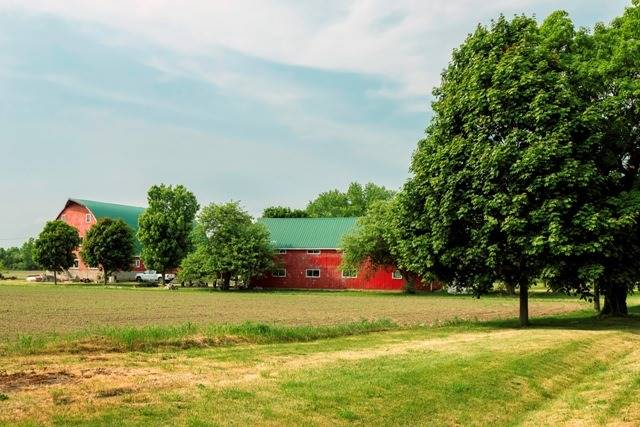 Detached at 167 White Chapel Rd, Prince Edward County, Ontario. Image 10