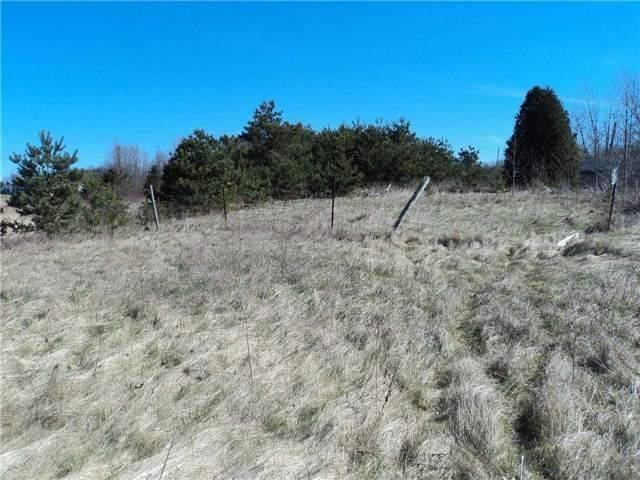 Vacant Land at 0 Conc. 4 Rd, Brighton, Ontario. Image 5