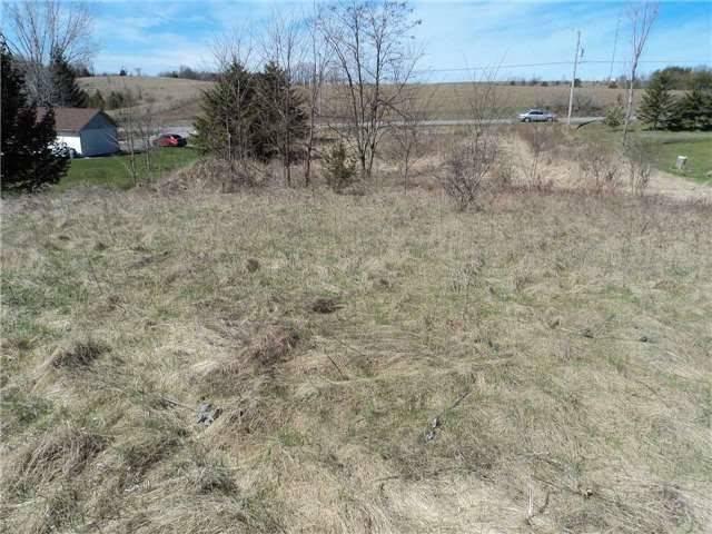 Vacant Land at 0 Conc. 4 Rd, Brighton, Ontario. Image 6