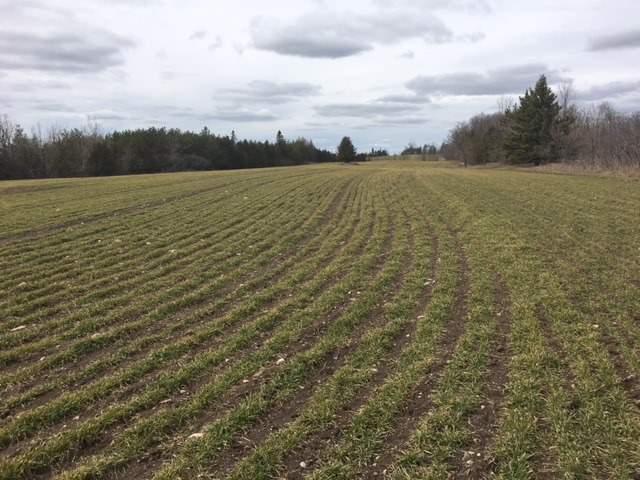 Farm at 1824 Dranoel Rd, Kawartha Lakes, Ontario. Image 8