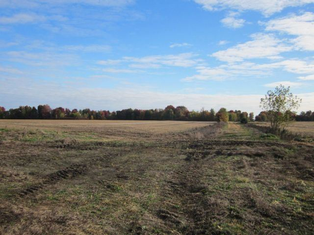 Vacant Land at Ptlt17 Drouin Rd, Clarence-Rockland, Ontario. Image 1
