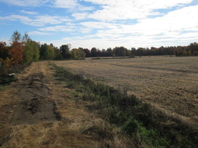 Vacant Land at Ptlt17 Drouin Rd, Clarence-Rockland, Ontario. Image 2