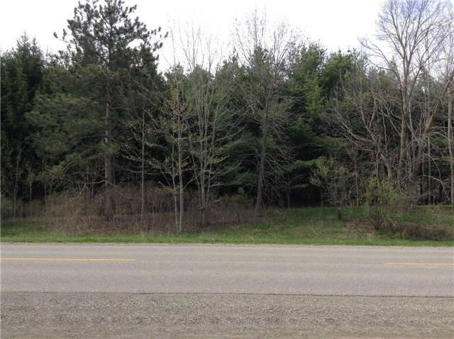 Vacant Land at 300 Norwich Rd, Brant, Ontario. Image 4