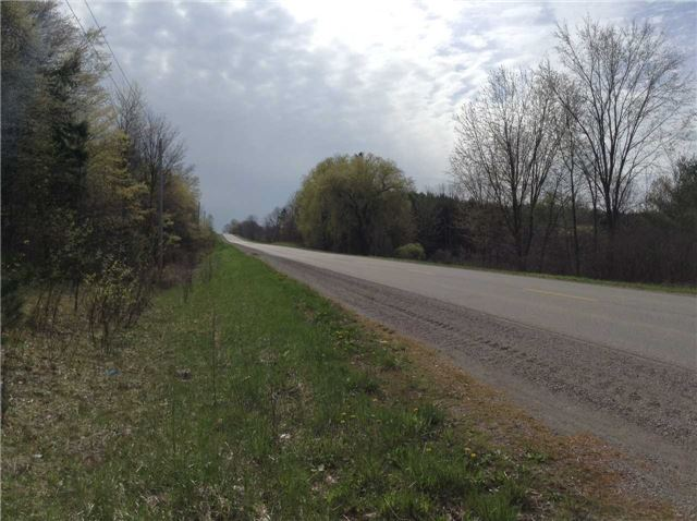 Vacant Land at 300 Norwich Rd, Brant, Ontario. Image 6
