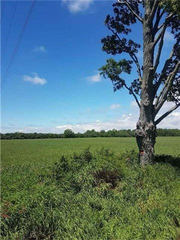 Vacant Land at 17511 Loyalist Pkwy, Prince Edward County, Ontario. Image 1