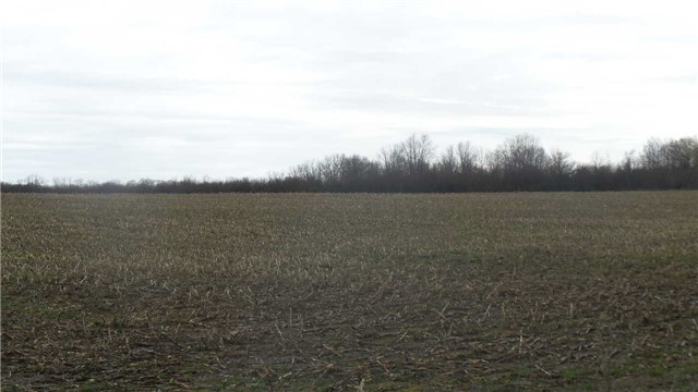 Vacant Land at 17511 Loyalist Pkwy, Prince Edward County, Ontario. Image 14