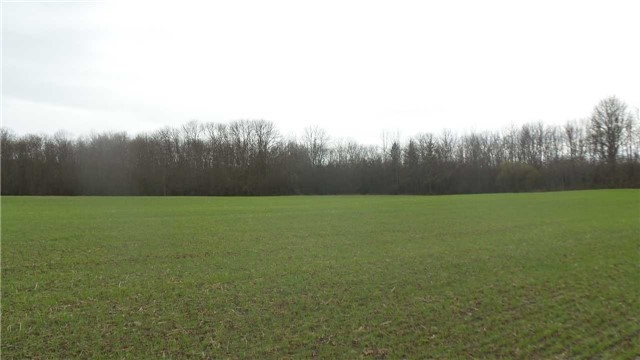 Vacant Land at 17511 Loyalist Pkwy, Prince Edward County, Ontario. Image 17