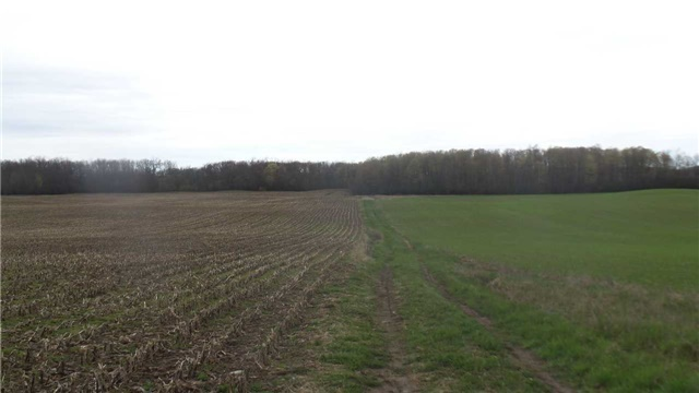 Vacant Land at 17511 Loyalist Pkwy, Prince Edward County, Ontario. Image 2